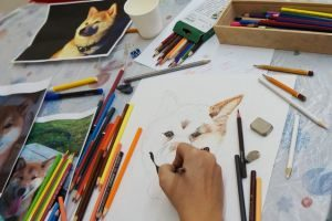Как выбрать курсы по рисованию новичку?
